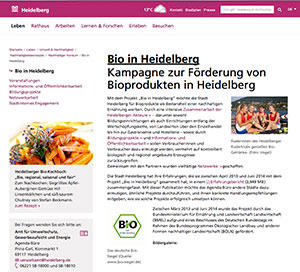 Website Nürnberg